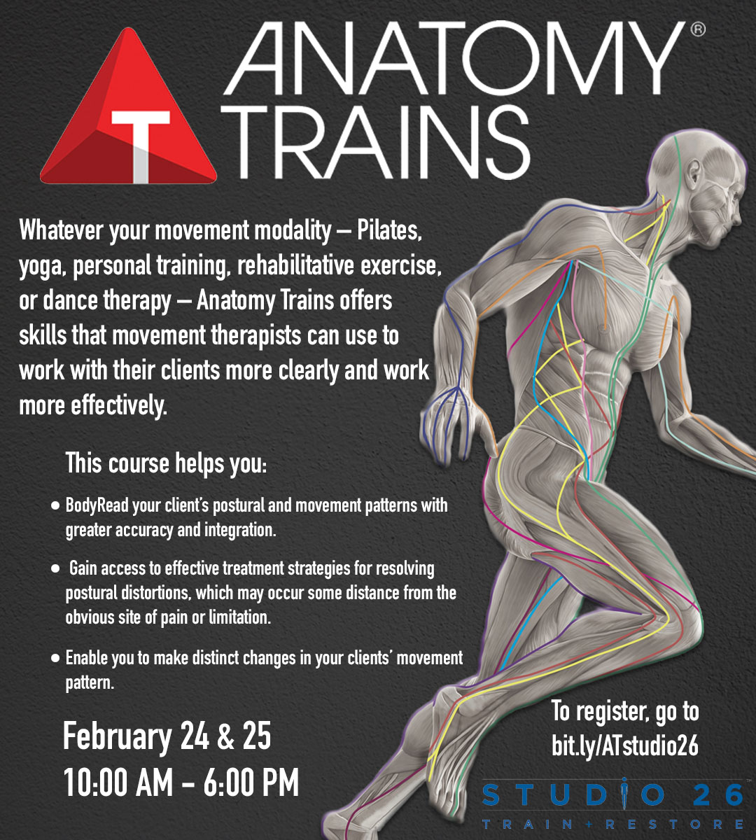 Anatomy Trains For Movement Professionals Nyc 224 22518